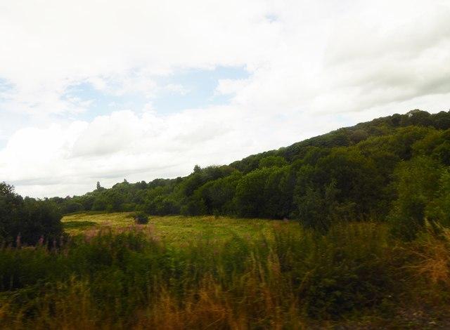 Wood and scrub land