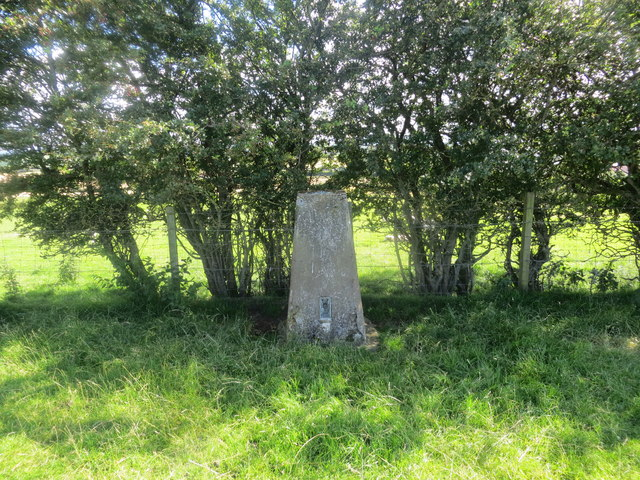 Fulshawwood Triangulation Pillar