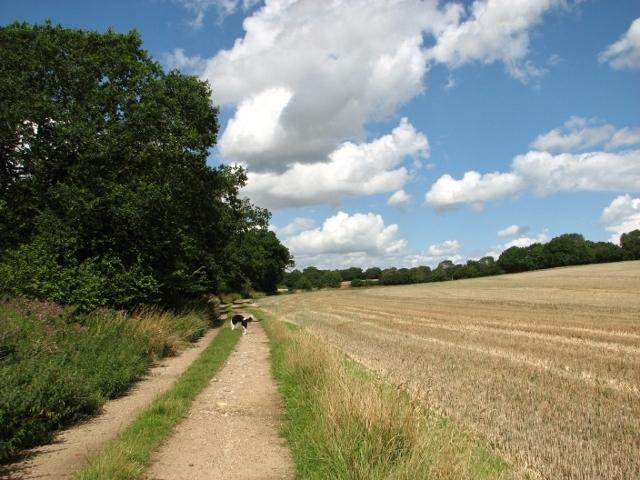 To Poringland on Wash Lane