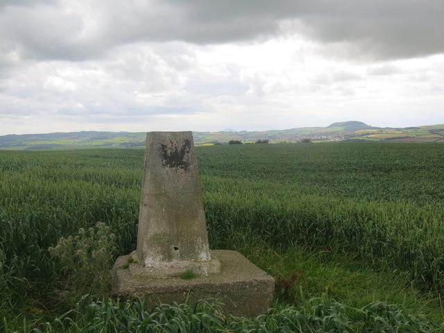 Guiltree Triangulation pillar