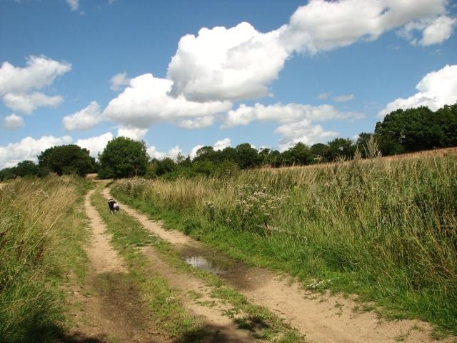 View along Wash Lane