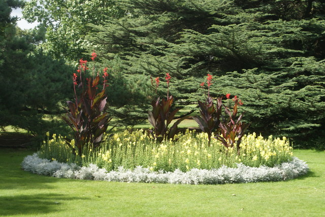 View of a flowerbed in Greenwich Park #2