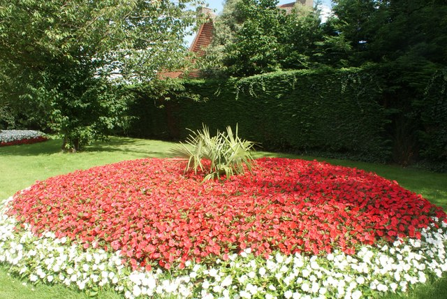 View of a flowerbed in Greenwich Park #5