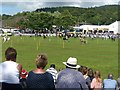 SO0352 : The Cattle Ring, Royal Welsh Show by Robin Drayton