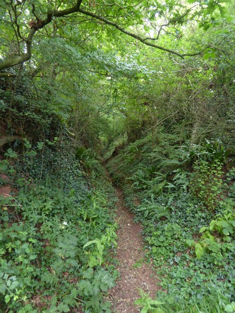 Old lane from Follymoor northwards