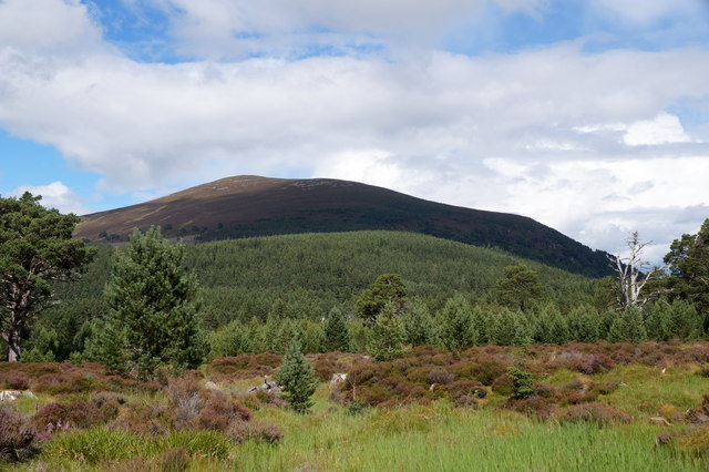 View to Meal A' Bhuachaille from Glen More
