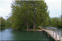 SP4907 : Diverging Thames channels at Medley by Christopher Hilton