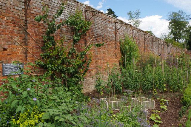 Walled garden, Berrington Hall