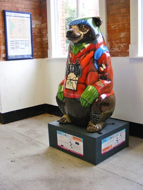 Wildlife Detective Bear