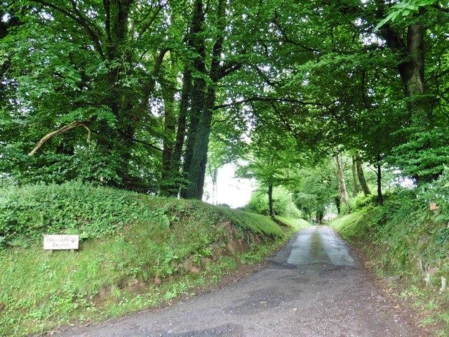 Driveway to Bradleigh Down