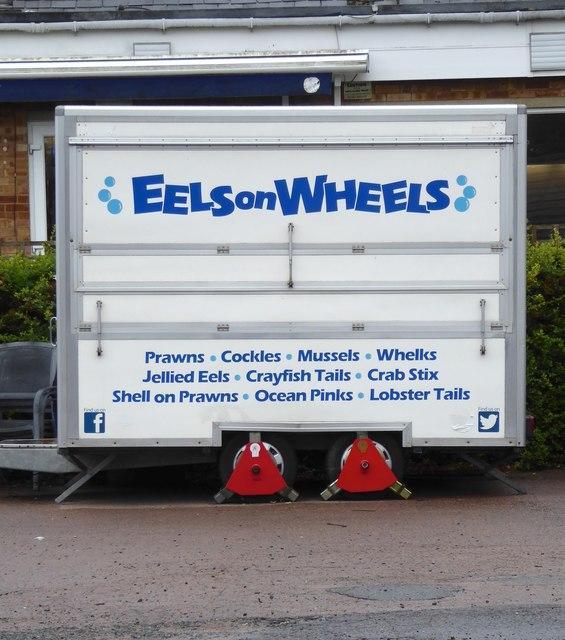Eels on Wheels