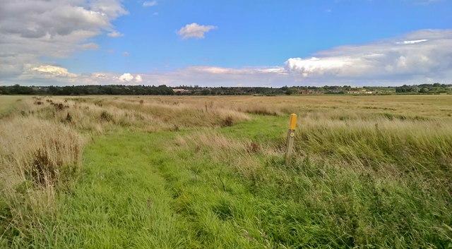 Crossing Saundby Marsh Drain