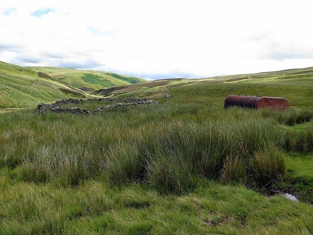 Sheepfold south of Buckham's Walls