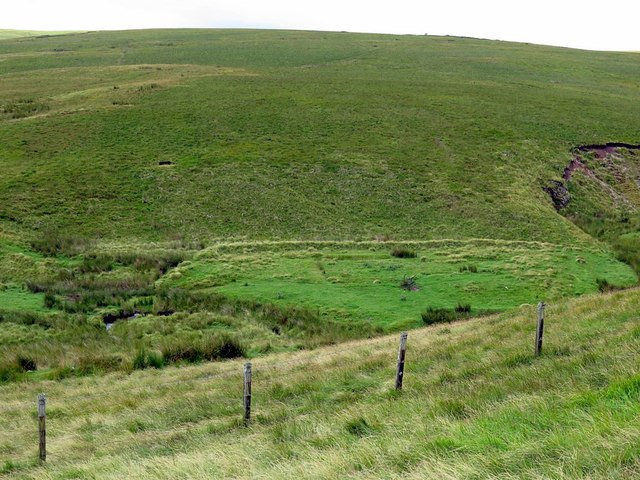 Former small field close to Buckham's Walls Burn