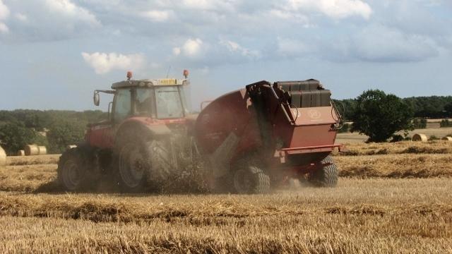 Harvesting is dusty work