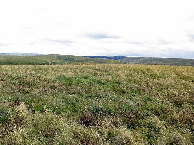 Wedder Hill