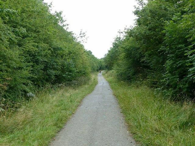 Nutbrook Trail on former railway alignment