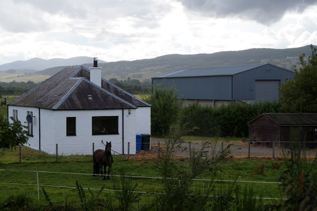 House and horse at Wester Lovat