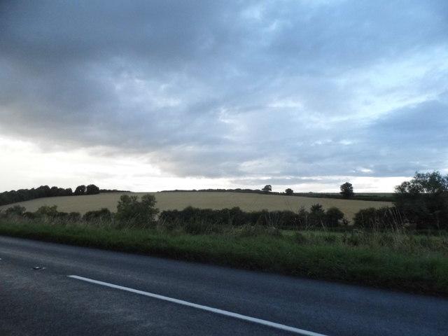 Fields by the B4192, Whittonditch