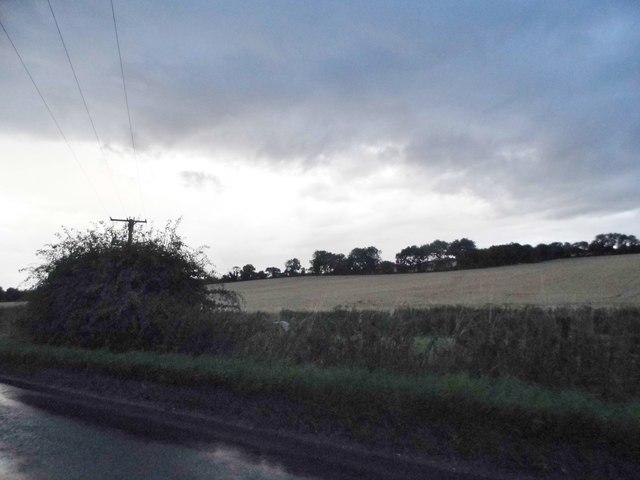 Field by the B4192, Preston