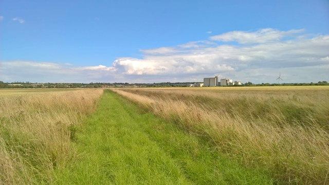 Path beside Saundby Marsh Drain