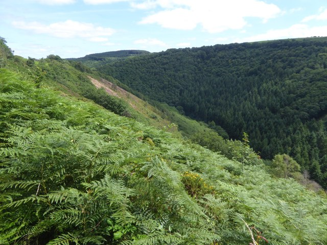 Gorge of the River Teign