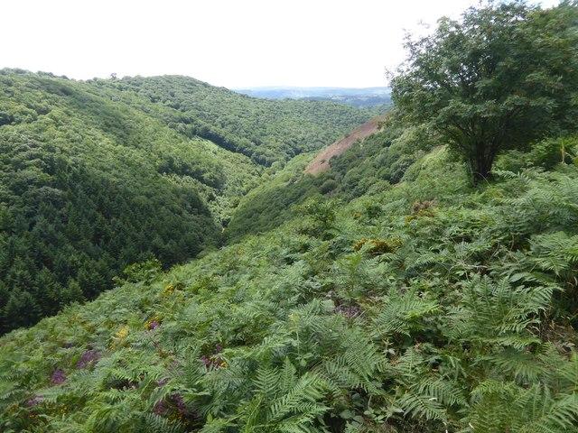 River Teign gorge