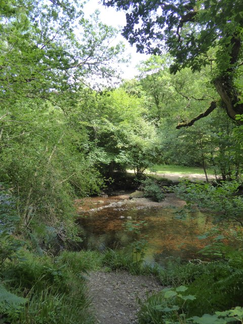 River Teign and Hannicombe Wood