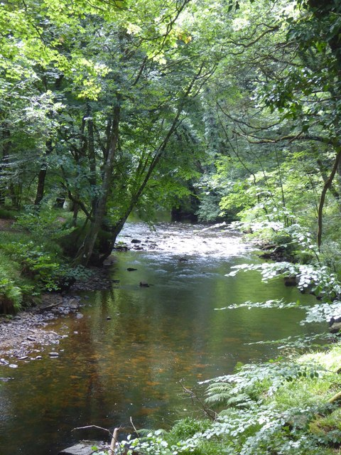 River Teign in woods in the gorge