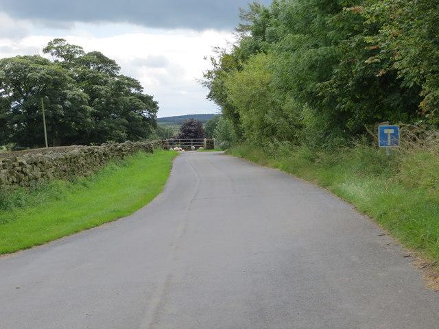 Road to Skelding Grange