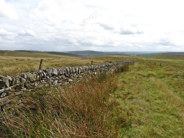 Boundary wall on Axe Edge Moor
