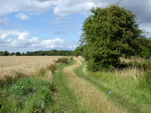 Footpath to Apton Hall Farm and beyond