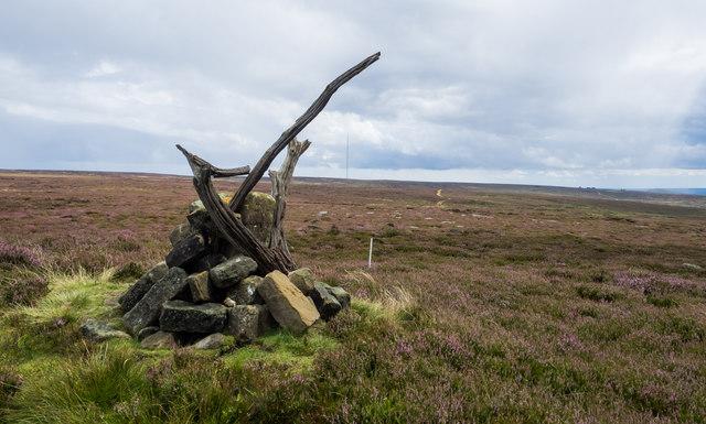 Cairn on heather moorland, Black Moor