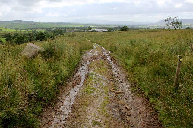 Track heading East towards Lickhurst Farm