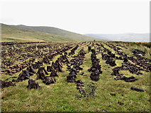 S2617 : Drying Peat by kevin higgins