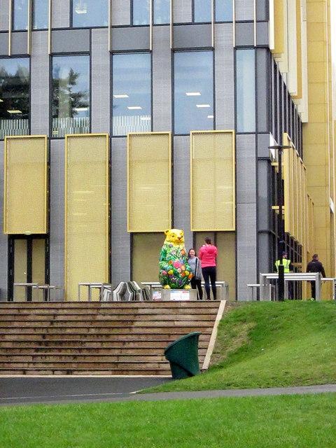 Birmingham Big Sleuth Buzz Bear University of Birmingham