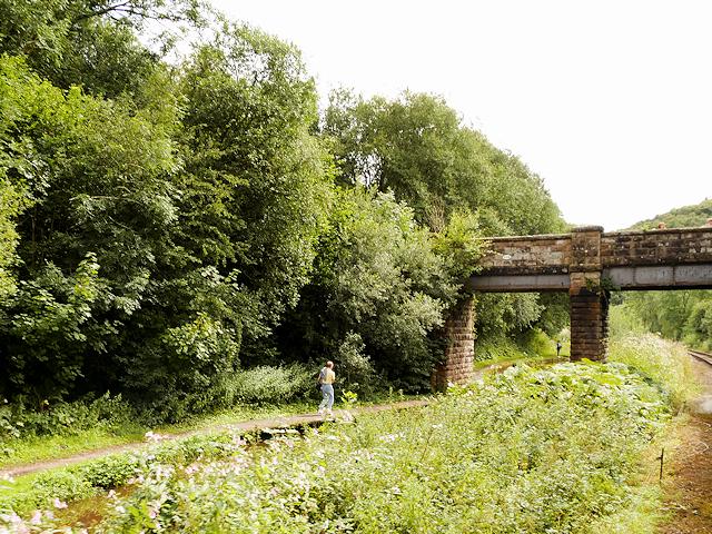 Caldon Canal, Bridge#50B (Podmore Bridge)