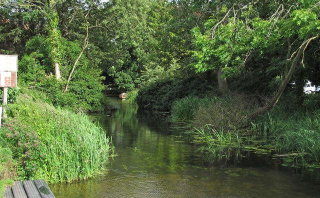 Waveney Channel near Wainford Mill