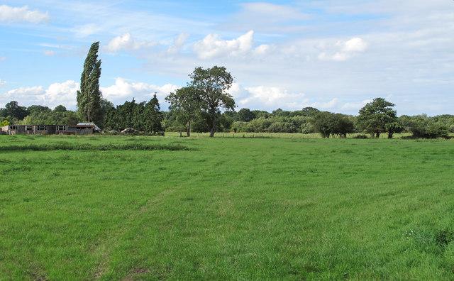 Pasture near Wainford Road, Broome