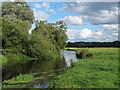 TM3291 : The Waveney at Outney Common, Bungay (3) by Roger Jones