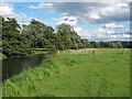 TM3291 : The Waveney at Outney Common, Bungay (4) by Roger Jones
