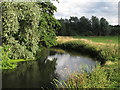 TM3390 : The Waveney at Outney Common, Bungay by Roger Jones