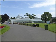 NS5667 : The Kibble Palace, Glasgow Botanic Gardens by David Smith