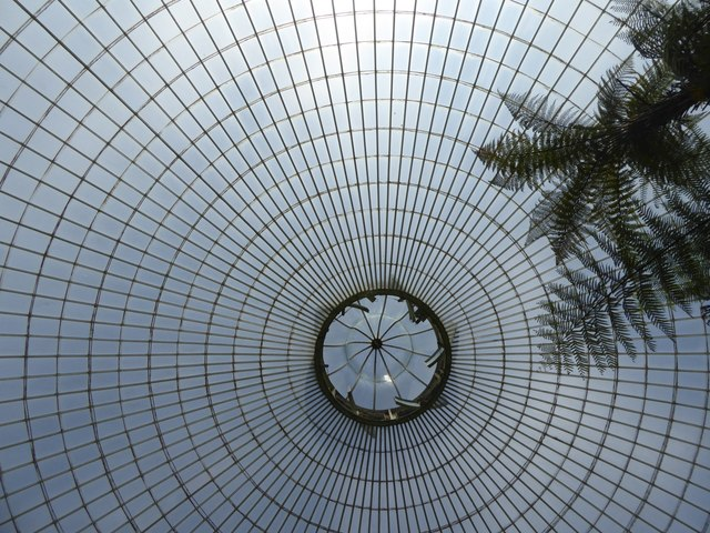 The dome of the Kibble Palace, looking vertically up