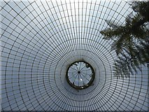 NS5667 : The dome of the Kibble Palace, looking vertically up by David Smith