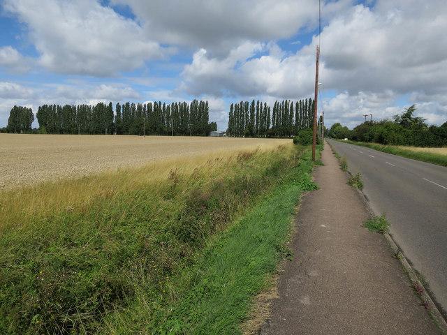 Fulbourn Road