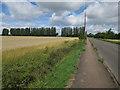 TL5056 : Fulbourn Road by Hugh Venables
