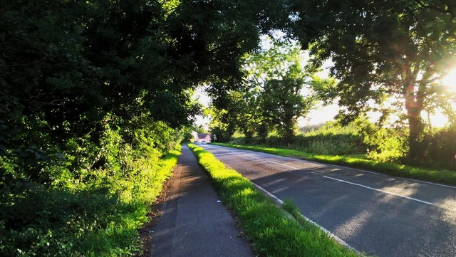 Peakirk Road, Glinton, on a summer evening