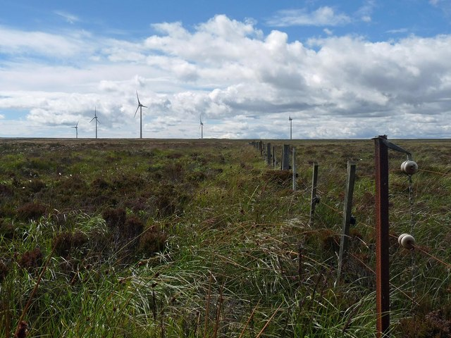 Fence, Baddens of Stroupster, Caithness