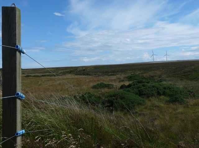 Fence above Gill Burn, Caithness